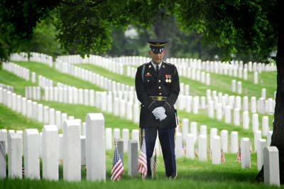 A member of the Honor Guard stands at rest.